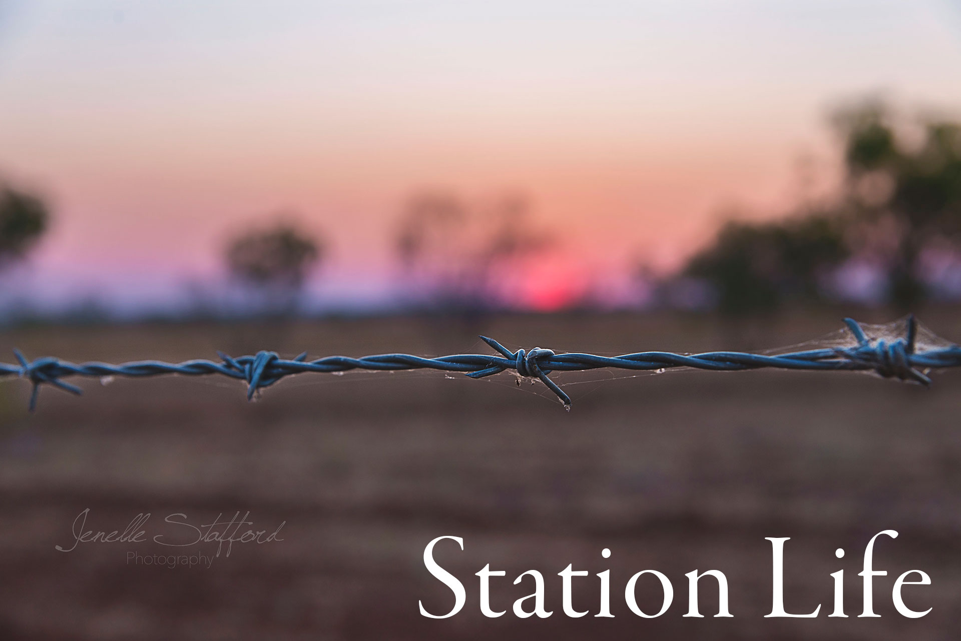 Station Life Gallery